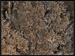 Rákóczi-barlang Aggtelek